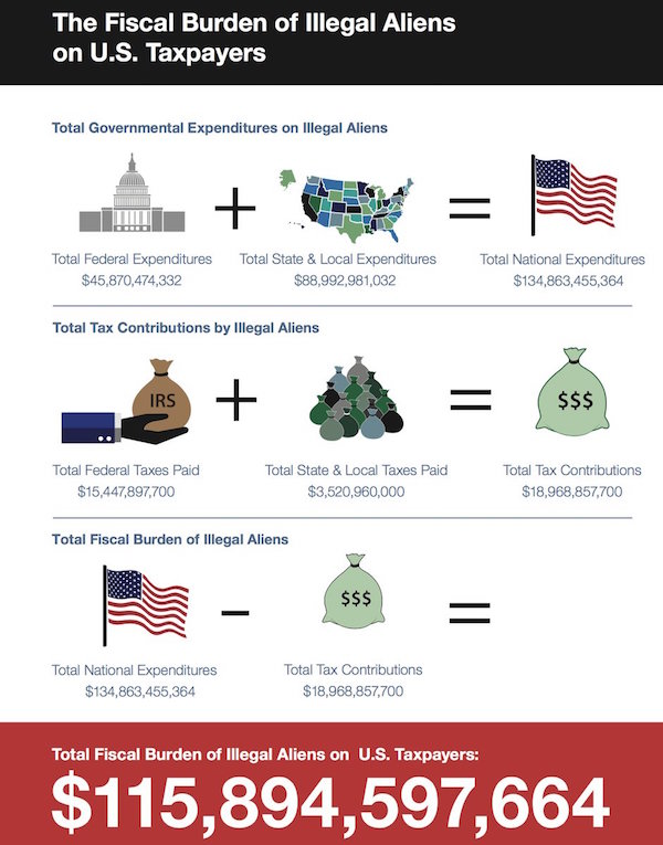 Net annual cost of illegal immigration