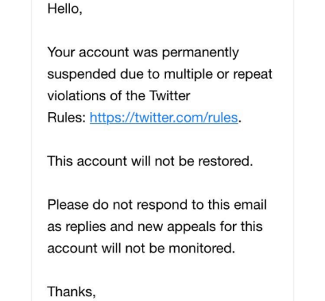 Twitter bans another conservative with no previous violations